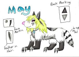 May Ref Sheet by draizor007