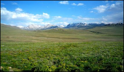 Deosai plains by OmerTariq