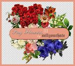 PNG's: Flowers III by sellyourhate