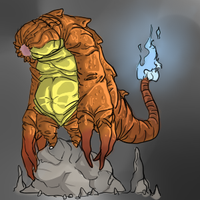 SHP Project - Charmander by WhiteN0iz