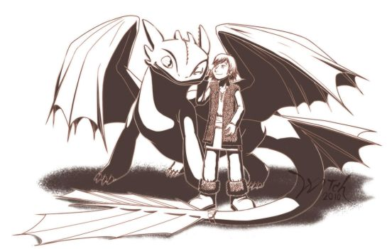 Hiccup 'n' Night fury by WittNV