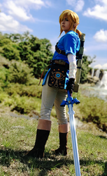 BOTW Link ready for action by Bev-Nap
