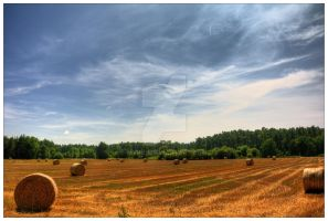 Work the land by myINQI