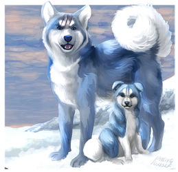The blue bear dogs by DancingfoxesLF