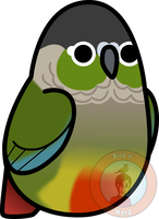 Too Many Birds! - Green Cheeked Conure by MaddeMichael