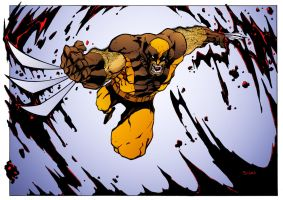 Wolverine by Mike Bowden by DrDoom1081