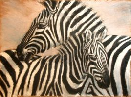 zebra by milanglo