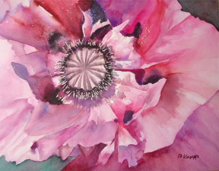 One more Poppy by p-e-a-k