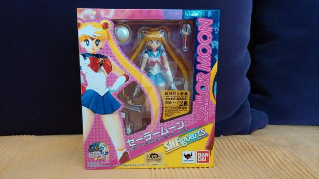 Sailor Moon S.H Figuarts Figure 2013 by nover