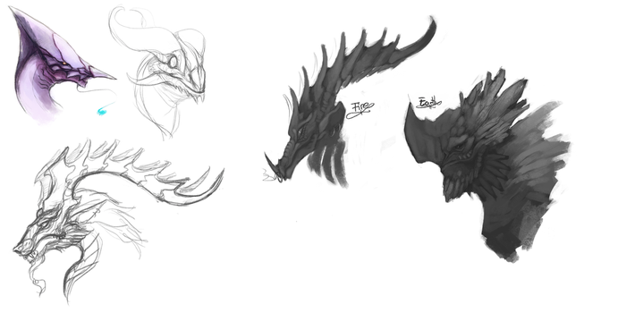 Dragon Concepts by Acostasama