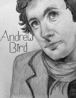 Andrew Bird by Lovegreen13