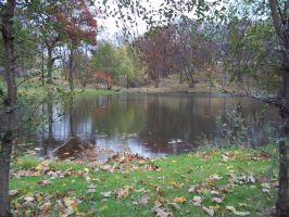 Frank's Pond front by WhiteFoxKitsune88