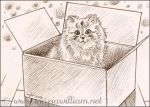 Special Delivery ACEO - #Inktober by MJWilliam