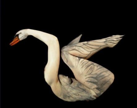 Swan Body Painting by FelixKelevra