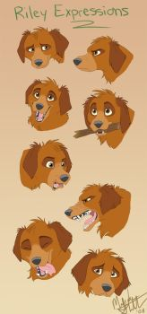 Riley Expressions by nooby-banana
