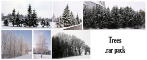 Snowy Trees by syccas-stock