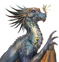 Dragon  fearie by telthona