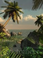 Tropical Beach by tomcec