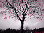 Tree of love by Speshall