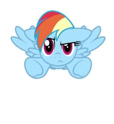 Rainbow Dash Flying (Front Angle) by Pupster0071
