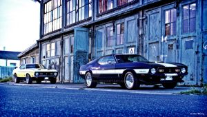 Mach1 vs Shelby by Ollidoro