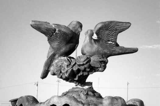 Dove Statue Love by puppyluva1991