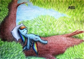 Rainbow Dash is resting on a tree by Ponystarpony