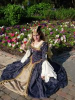 The Renaissance Gown by papalacios
