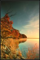 Autumn Morning II by cailenc