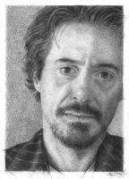 Robert Downey jr. by Susie-K