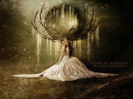 Goddess of the Woods by Carlos-Quevedo