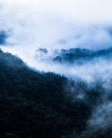 Foggy by Aredelsaralonde