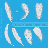 Feather Custom Shapes by flashtuchka