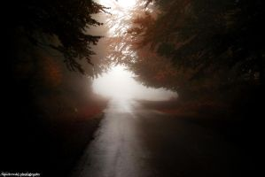 Road to Heaven by Vestermk