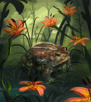 The Toad by Summer-Lynx