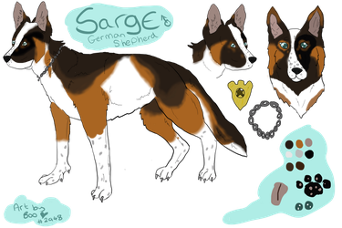 Sarge by kandec