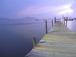 muelle by D4rB