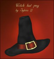 Witch hat - png by Sylwia77