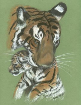 Mother Tiger in pastel by catuvalencia