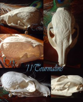 For Sale: Gray Fox by tourmaline-83