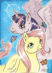 ATC Twilight Sparkle and Fluttershy by Haawan