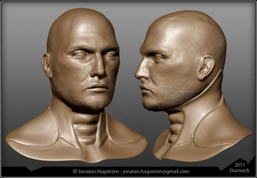 3D Head Sculpt by Stamsich