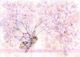 Mauve Blossom and Butterfly by JoannaBromley