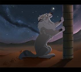 Firefly in the Desert by KohuStudios