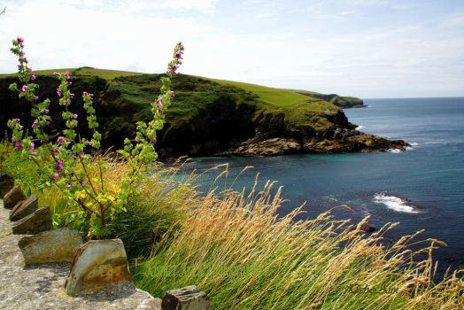 Port Isaac Harbour Entrance by Deb-e-ann