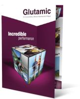 Glutamic Brochure Cover by AlGafy