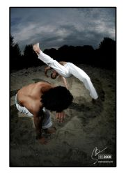 Capoeira Two by input-output