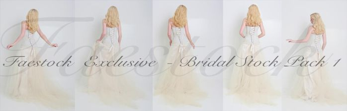 Bridal Exclusive Stock Pack 1 by faestock