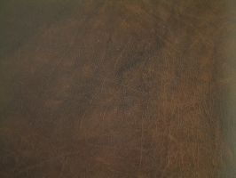 Leather Texture 1 by Riverd-Stock