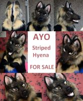 AYO Striped Hyena Partial For Sale by Yuki-Moon